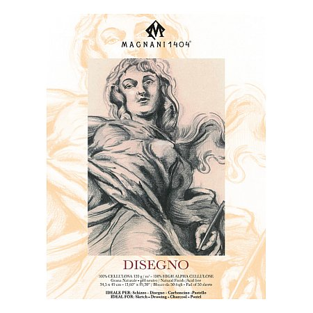 Magnani Disegno 120g, 50 sheets - 345x490mm