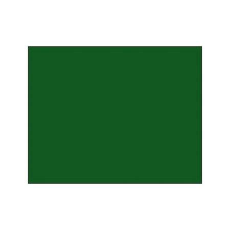 Polychromos Pencil - 165 juniper green