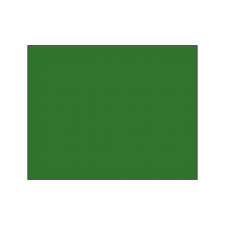 Polychromos Pencil - 167 permanent green olive