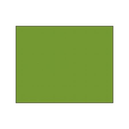Polychromos Pencil - 168 earth green yellowish