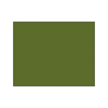 Polychromos Artists Pastels - 173 olive green yellowish
