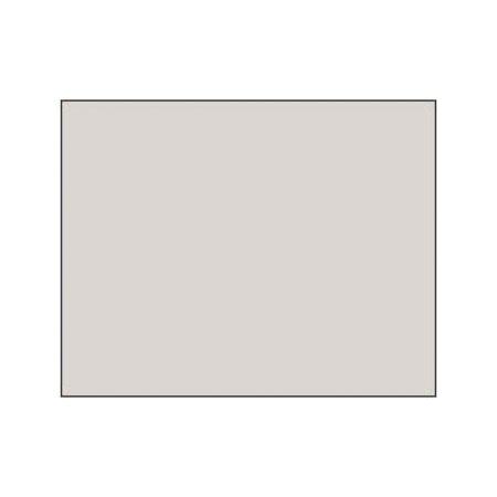 Polychromos Pencil - 270 warm grey 1